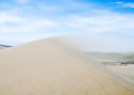 Wind blowing sand off the crest of a Bruneau dune.  Despite the strong winds the sand was not being lifted very high off the ascending slope. I still thought twice about exposing cameras to  ...